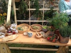 Les divers outils et plantes présentés lors de l'atelier d'herboristerie