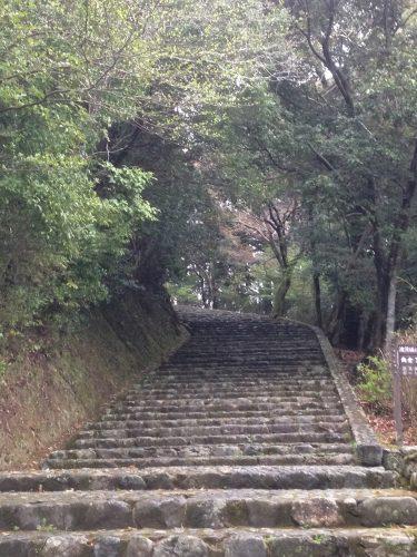 Des escaliers abîmés par le temps qui mènent à des sentiers perdus dans une nature préservée