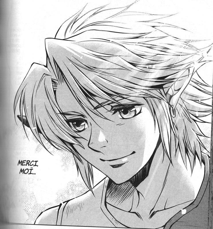 Link, tiré du manga de Twilight princess