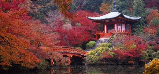 Kyoto à la une